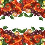 Bright vegetal border Royalty Free Stock Images