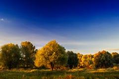 Bright warm autumn landscape Stock Photos