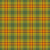 Bright Warm Plaid Royalty Free Stock Photos