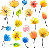Bright watercolor flowers in naive style Royalty Free Stock Image