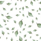 Bright watercolor pattern with leaves. Royalty Free Stock Photography