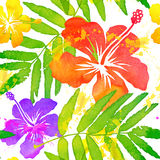 Bright watercolor tropical flowers vector seamless Stock Image