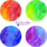 Bright watercolor vector circles Stock Image