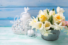 Bright white daffodils and tulips  flowers in bucket, decorative Stock Photos