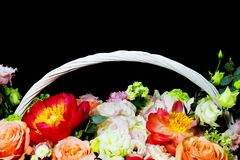 Bright white flower arrangement in a basket on a dark background royalty free stock photography