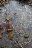 Dramatic White Lines in Ice in Pond with Leaf and Pebbles royalty free stock photography