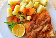 Bright wiener schnitzel Royalty Free Stock Photos