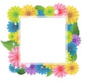 Bright Wildflowers Frame Stock Photos