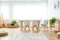 Bright window in dining room. With wooden furniture, white accessories and ferns Royalty Free Stock Photo