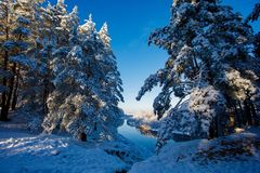 Bright winter day on high river bank. Forest in winter. Bright winter day on high river bank. Forest after heavy snowfall. Morning landscape stock photo