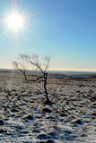 Bright Winter in Derbyshire Royalty Free Stock Photography