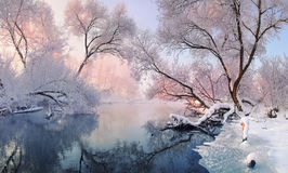 Bright winter landscape with hoarfrost everywhere. Mostly calm winter river, surrounded by trees covered with hoarfrost and snow t Royalty Free Stock Photo