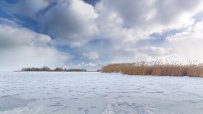 Bright winter landscape Royalty Free Stock Photos