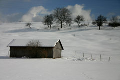 Bright winter's day. Cowshed and paddock in winter stock photo