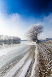Bright winter scenery, with frozen river and trees Royalty Free Stock Image