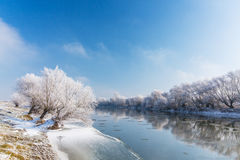Bright winter scenery, with frozen river and trees Stock Image