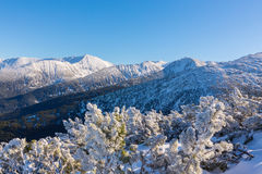 Bright winter scenery in the mountains, with frost and rocks covered with fresh snow. On a cold freezing day Stock Photo