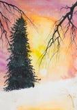 Bright winter sunset stock image