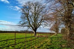 A bright winters day in england Stock Photo