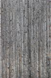 Bright Wood Texture Stock Photography