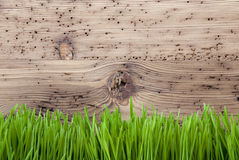 Bright Wooden Background, Gras, Copy Space Stock Photos