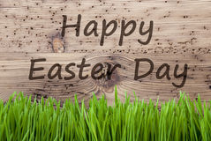Bright Wooden Background, Gras, Text Happy Easter Day Royalty Free Stock Photos