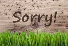 Bright Wooden Background, Gras, Text Sorry. English Text Sorry. Spring Season Greeting Card. Bright Aged Wooden Background With Gras Royalty Free Stock Images