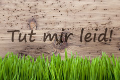 Bright Wooden Background, Gras, Tut Mir Leid Means Sorry. German Text Tut Mir Leid Means Sorry. Spring Season Greeting Card. Bright Aged Wooden Background With Stock Image