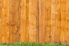 Bright wooden fence with green grass under it. Stock Photos