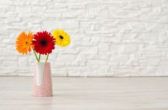 Bouquet from three gerbera in a vase on the floor on a backgrou stock photography