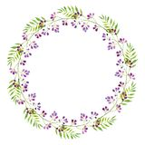 A bright wreath of branches of purple flowers and green leaves, watercolor illustration stock illustration