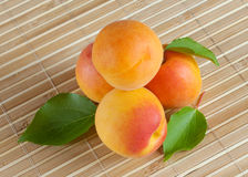 Bright yellow apricots Royalty Free Stock Photo