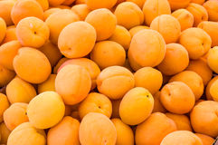 Bright yellow apricots on display Royalty Free Stock Images