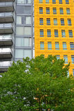 Bright Yellow building with tree Royalty Free Stock Photos