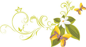 Bright yellow butterflies with flower. Decorative  Royalty Free Stock Photography