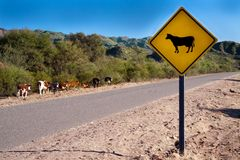 A bright yellow cow sign Stock Images