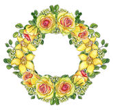 Bright yellow floral wreath with roses and orchids. Bright floral wreath of yellow orchids, waxflowers, roses and twigs of eucalyptus isolated on white with Stock Photos