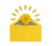 Bright yellow flower in a yellow envelope. Rudbeckia flower. Petals around the yellow flower. Flat lay Royalty Free Stock Photography