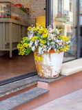 Bright yellow flowers at the entrance Stock Photography
