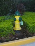 Bright yellow and green fire hydrant royalty free stock photography