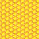 Bright yellow honeycomb seamless pattern background. Hexagonal prismatic wax cells built by honey bees in their nests  eps 1. 0 illustration Stock Image
