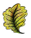 Autumn leaf of an oak. Watercolor. Bright yellow-hot sheet of oak. Autumn mood. Watercolor Royalty Free Stock Photo