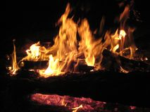 Campfire with red embers burning royalty free stock photos