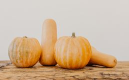 Bright yellow and orange pumpkins on light brown wooden table royalty free stock images