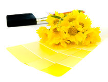 Bright yellow paint plan Royalty Free Stock Images