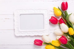 Bright yellow, pink  and white tulips flowers  and empty frame o Stock Photography