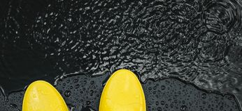 Women`s bright yellow rubber boots stand under raindrops on a black background in front of a puddle. royalty free stock photography