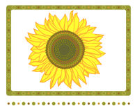 Bright yellow sunflower with 2 borders. Vector illustration of bright sunflower and nature border isolated on white background. All layers labeled with no Stock Photos