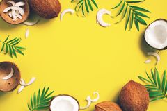 Bright yellow tropical background with coconuts and leaves royalty free stock photos