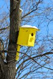 A bright yellow wooden birdhouse affixed to a tree trunk. In a sunny day Royalty Free Stock Photo